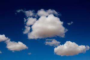 Workforce management: The next cloud resource for businesses?